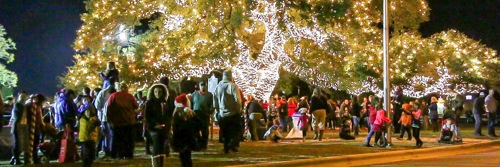 Parks - Tree Lighting-1